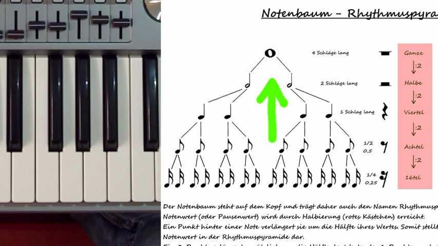 Notenrhythmik anhand des Notenbaums erklärt